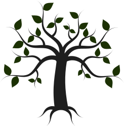 Project logo: tree with leaves and roots